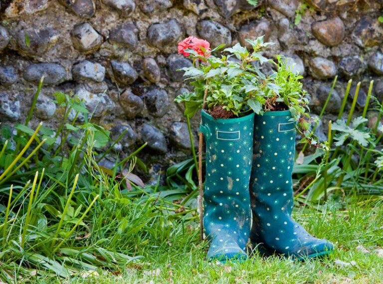 Care and safety tips for gardeners