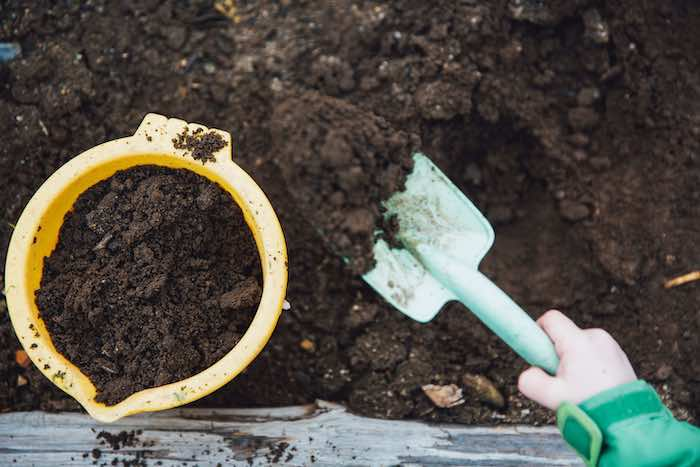 Choosing the Right Type of Soil